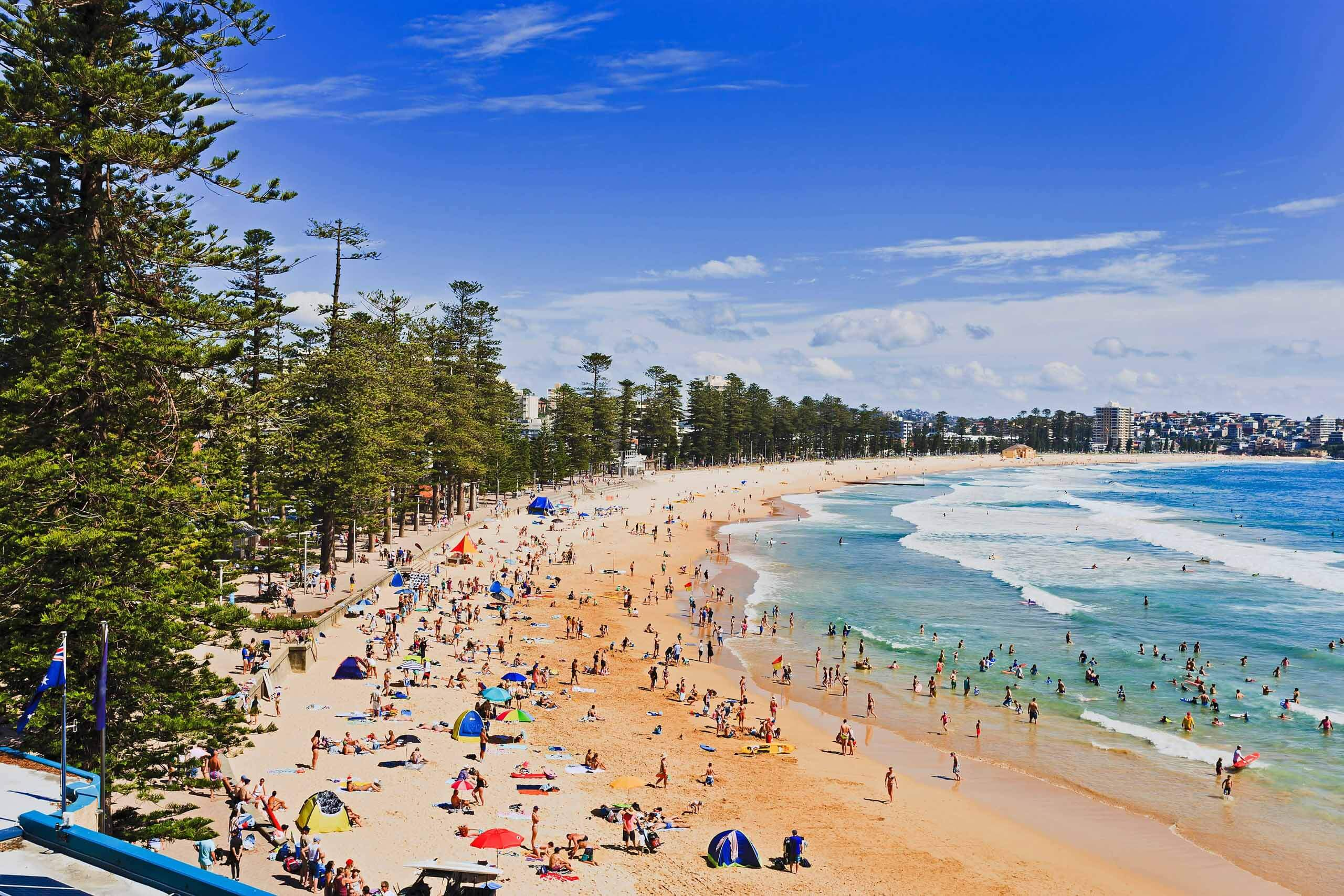 Aerial view of Sydney's Manly Beach