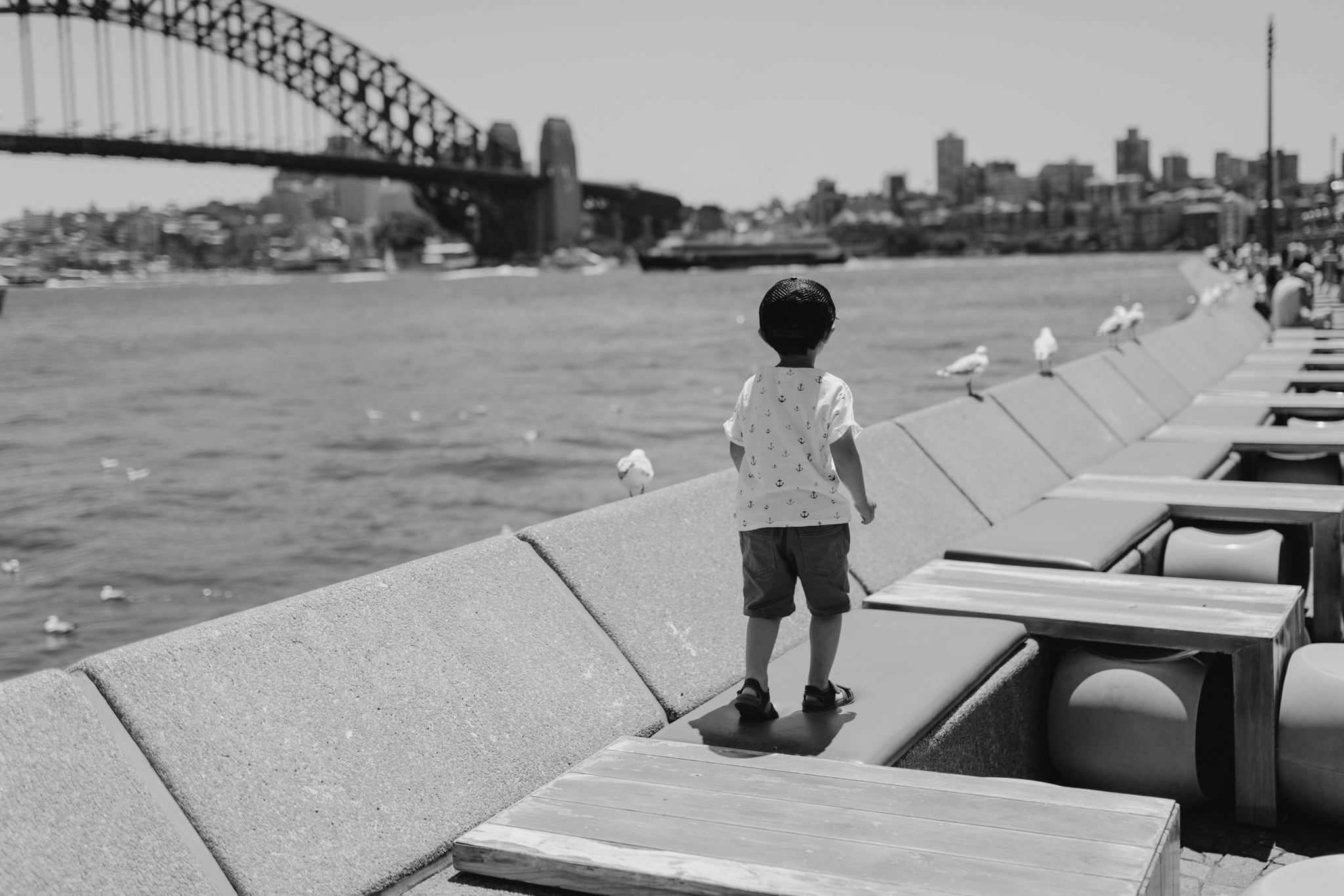 Black and white photo of young boy and seagulls on Sydney Harbour