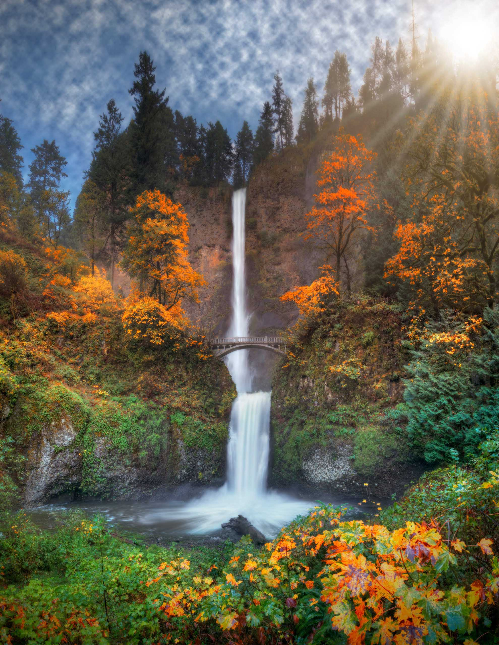Multnomah Falls in Columbia River Gorge surrounded by fall foliage