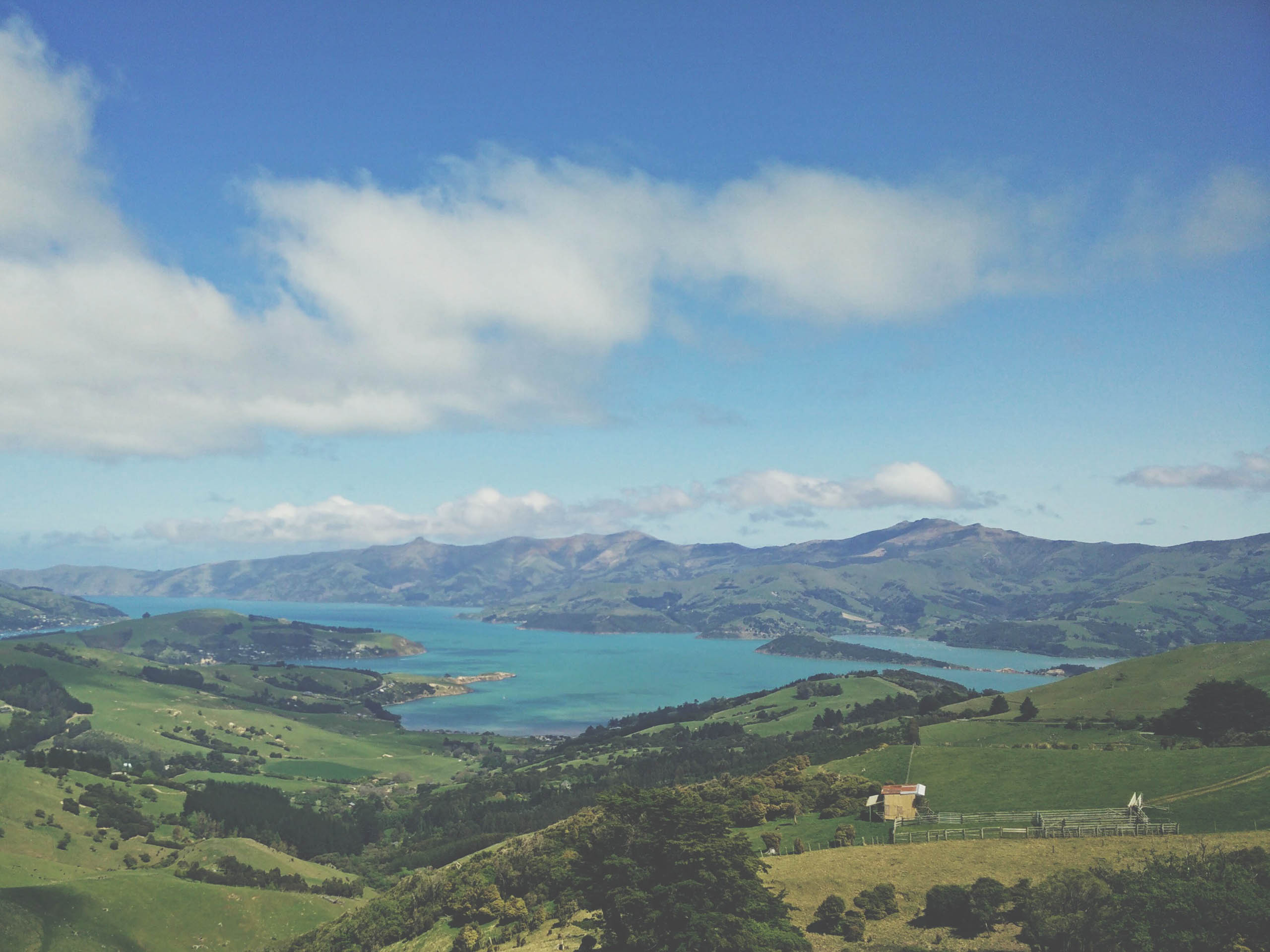 Aerial view of Akaroa. Photo by Edward Manson on Unsplash