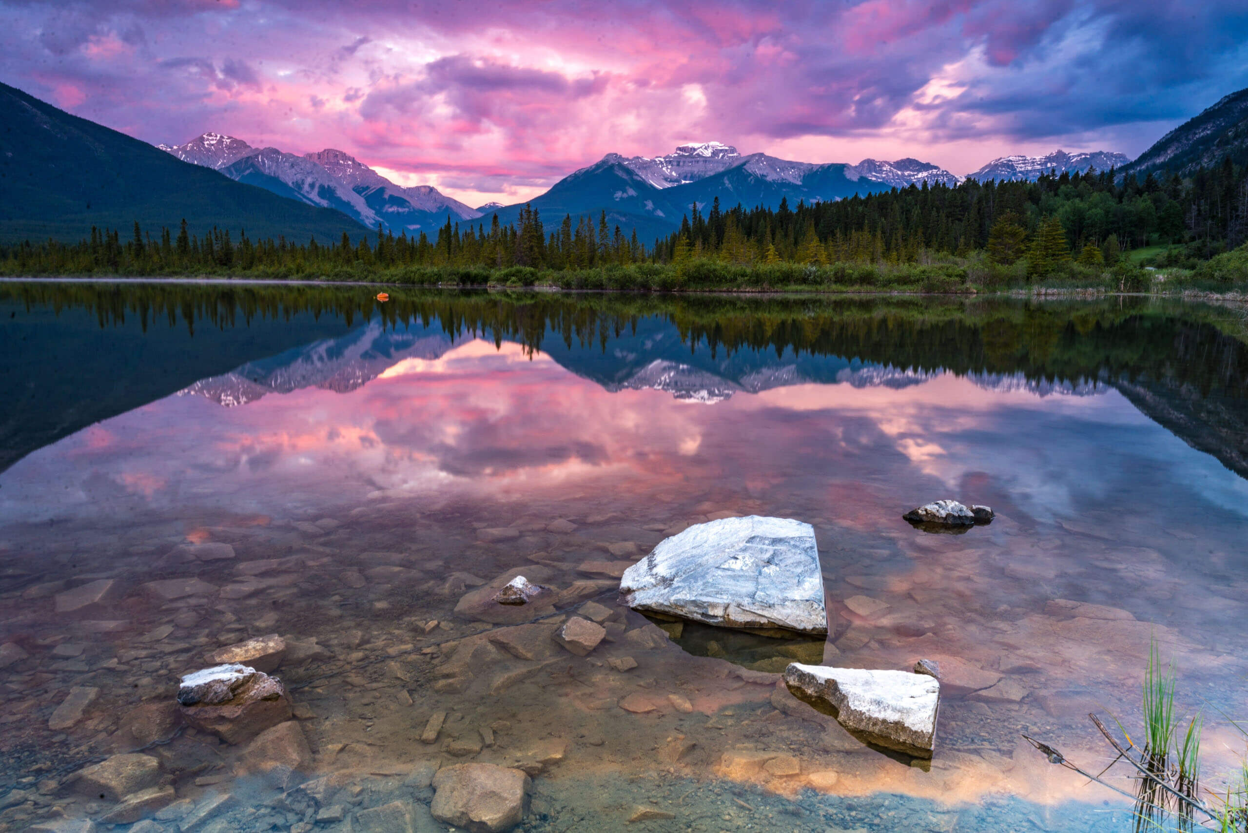 View of Vermilion Lakes Road, Banff. Picture by Kevin Noble on Unsplash