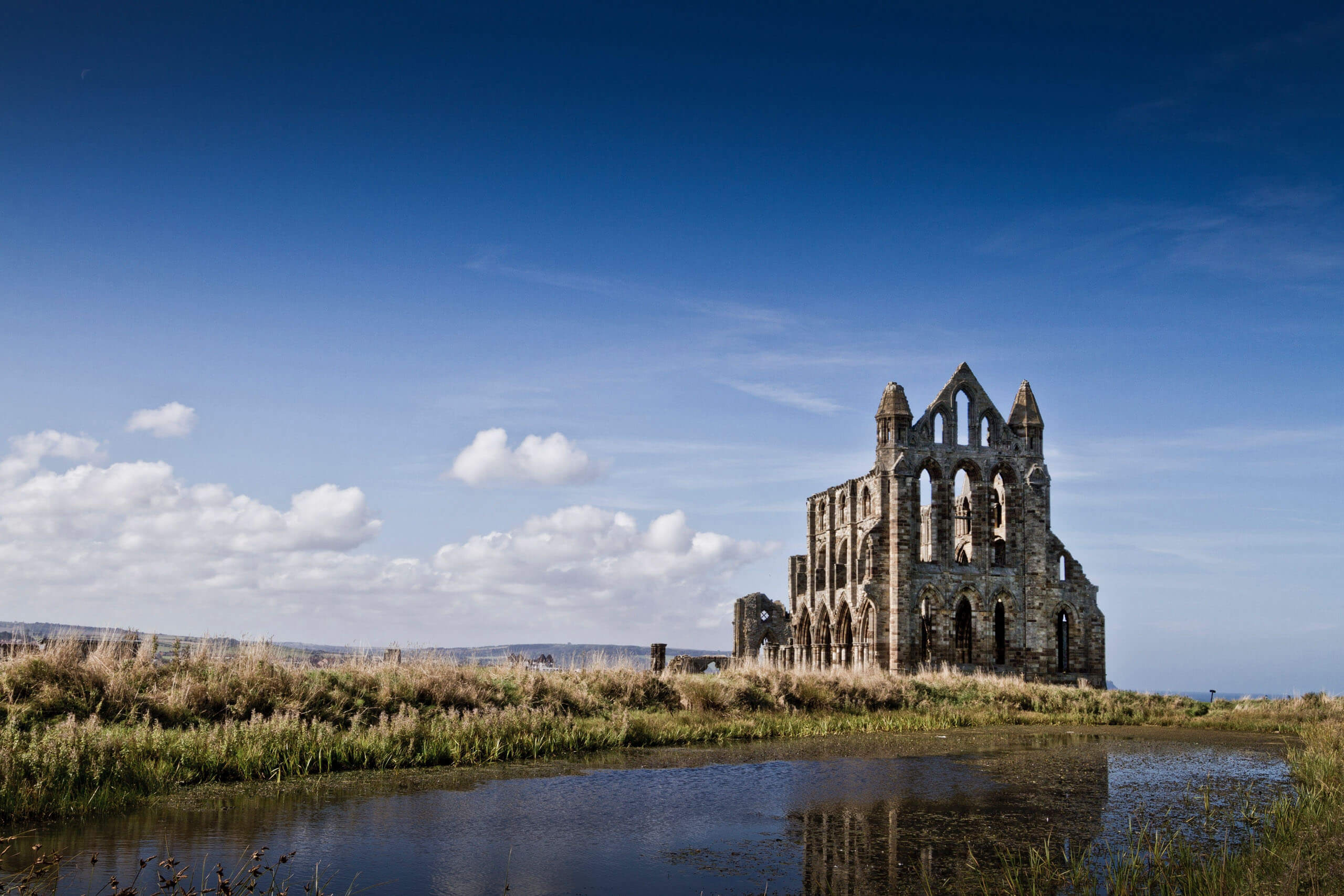 Whitby Abbey. Photo by Michael D Beckwith on Unsplash