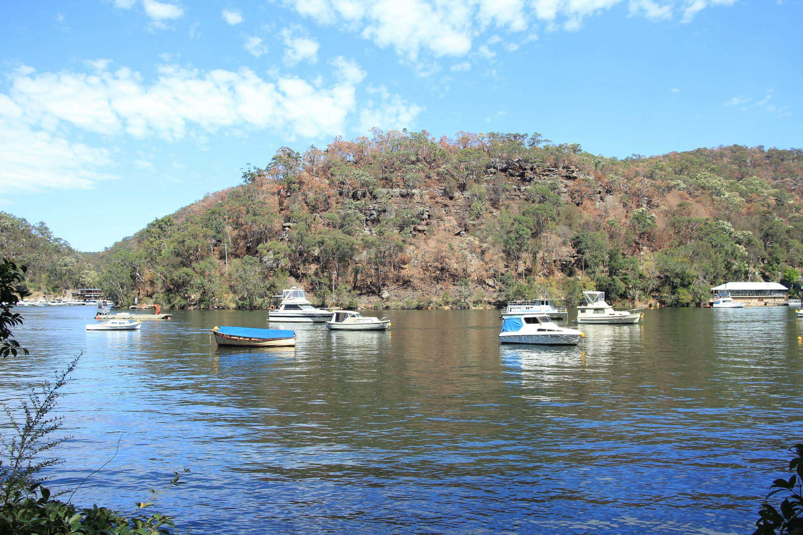 White boats mooring at Berowra Waters'