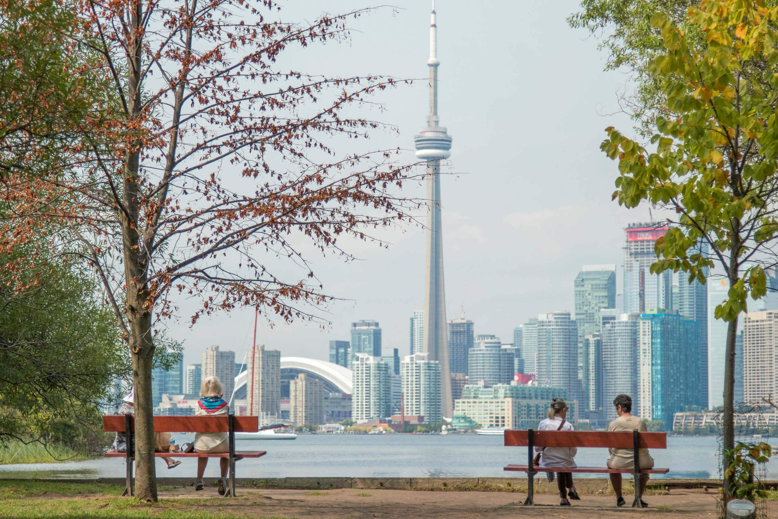 People sitting on park benches on Toronto Island looking at the city